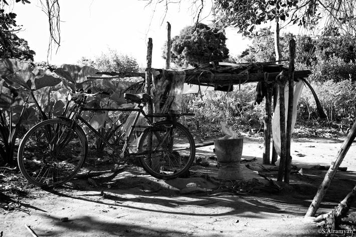 ورشة تصليح الدراجات الهوائية في وسط الغابة.